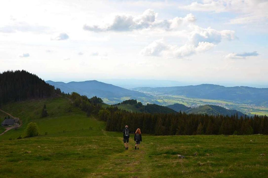 Naturerlebnis mit Weitsicht: Wanderung auf den Hinterwaldkopf.  | Foto: Anita Fertl