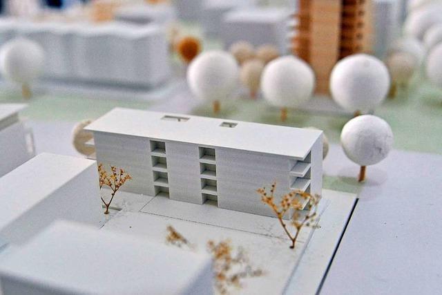 Die Genossenschaft Bauverein beklagt zunehmende Auflagen und Regularien in Freiburg
