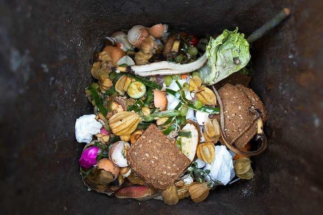 Amt zählte 135 Müll-Beschwerden in einer Woche