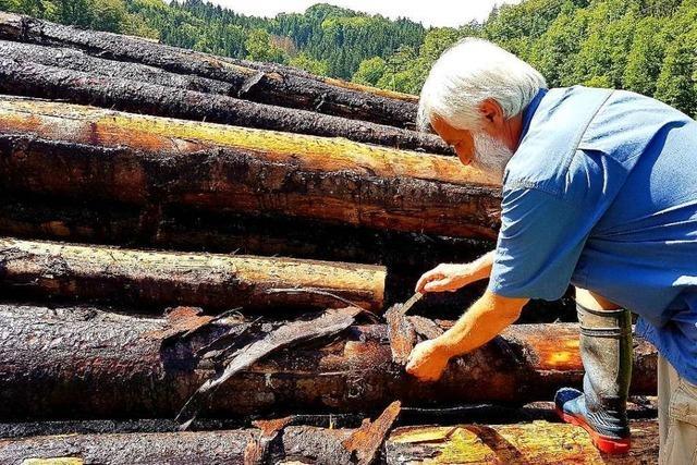 Der Ärger um die Holz-Nasslager im Wiesental wird immer größer