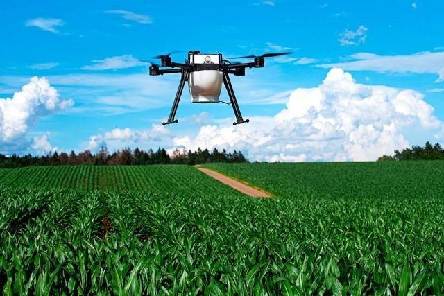 Biologische Schädlingsbekämpfung mit Drohnen hat sich etabliert