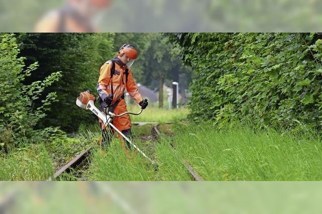Stillgelegte Bahnstrecken wieder in Betrieb