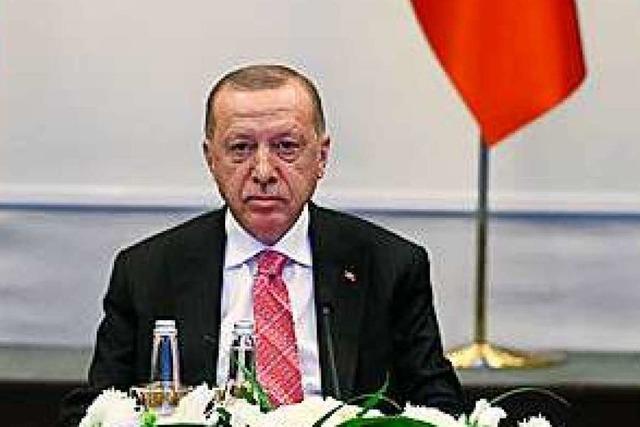 Recep Tayyip Erdogan, der beleidigte Präsident