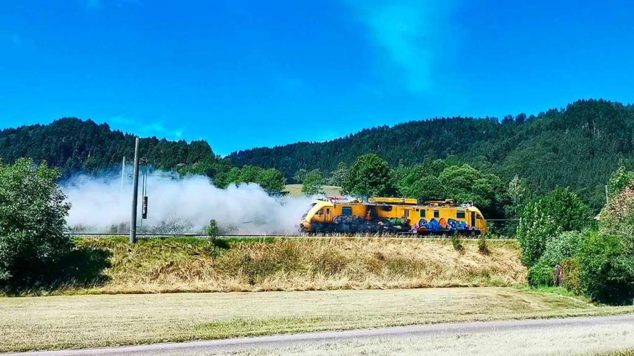 Der Zug bei der Geisterfahrt in Richtung Offenburg.  | Foto: kamera24.tv