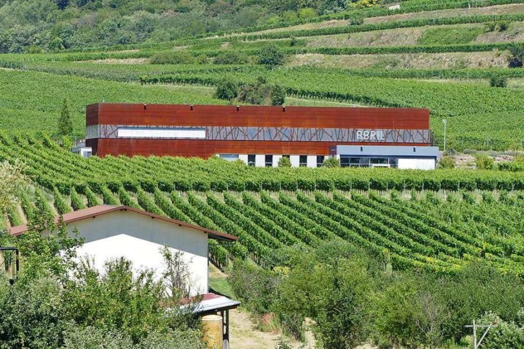 Im Weingut Abril in Bischoffingen find... die erste Online-Wein-Fass-Bar statt.  | Foto: Gerold Zink