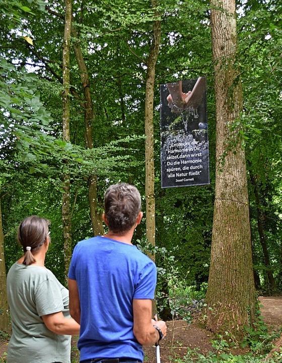 Sprüche zum Nachdenken findet man im Denzlinger Wald.  | Foto: Helena Kiefer