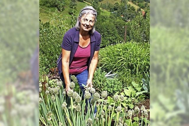 Einige Kräuter finden ihren Weg selbst in den Garten