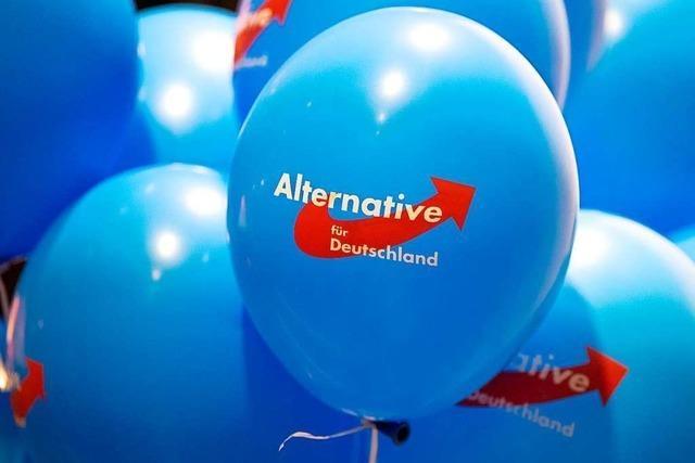 Der 33-Jährige Johannes Erling kandidiert für die AfD Südliche Ortenau – Kinzigtal
