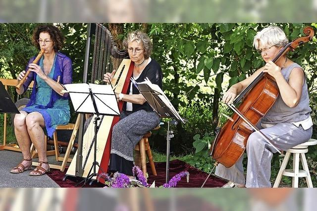 Kammermusik unter freiem Himmel