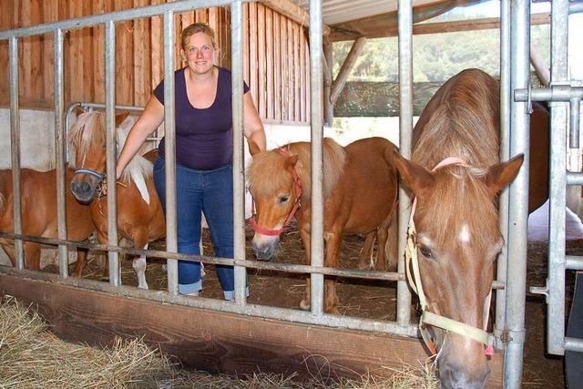 Die Ponys sind der ganze Stolz von Linda Bruckert