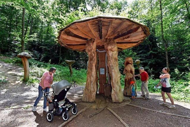 Freiburger zog es im April und Mai öfter und länger in den Wald