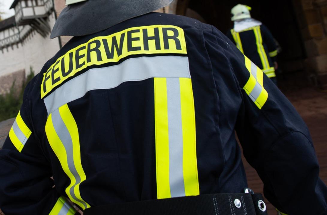 Defekte Pumpe ausgewechselt  | Foto: Swen Pförtner (dpa)
