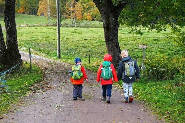 Im September soll in Maulburg ein Waldkindergarten eröffnen