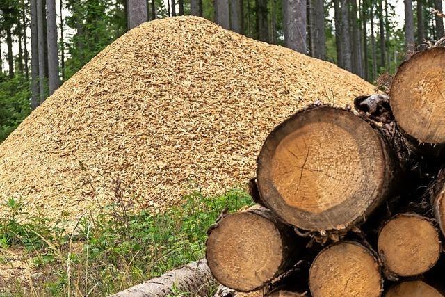 Kein Absatz für Käferholz