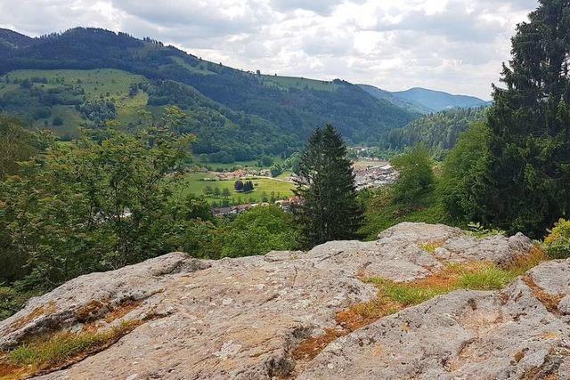 Wo die ersten Schönauer wohnten – die Wallgraben-Siedlung am Haideck