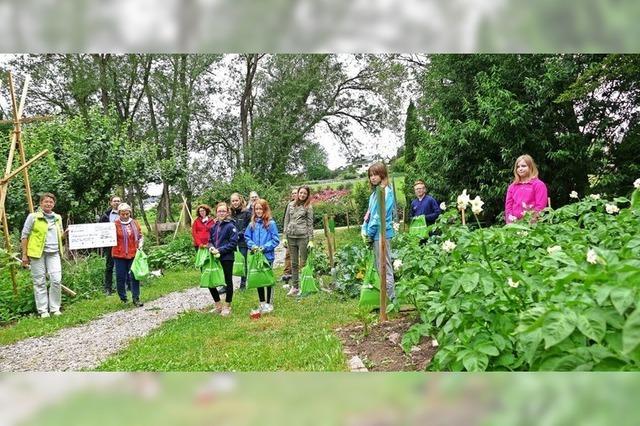 Auszeichnung für Schulgarten-Projekt