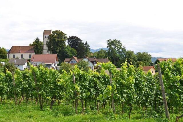 Pfarrer Dirk Kellner wechselt von Steinen ins Markgräflerland