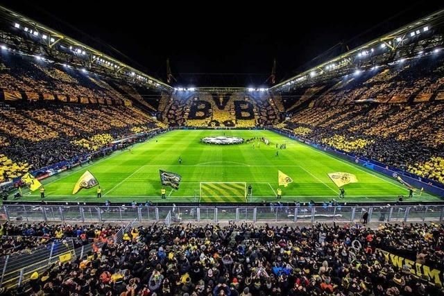 Wie könnte eine vernünftige Rückkehr der Sportfans in die Stadien und Hallen aussehen?