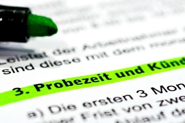 Warum Titisee-Neustadt und der Wirtschaftsförderer getrennte Wege gehen