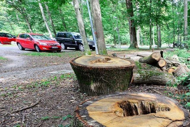 Wie es mit den Parkplätzen am Freiburger Keidel-Bad weitergeht, ist unklar