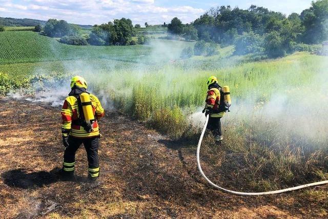 Feuerwehr löscht Flächenbrand bei Wagenstadt