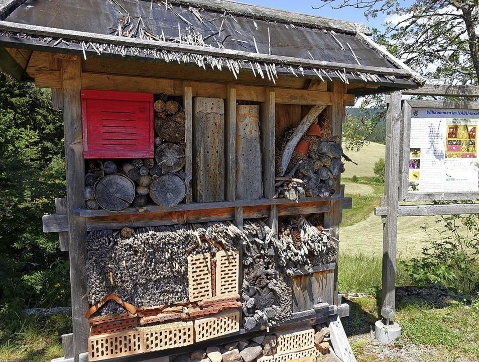 Lebhaft geht es am  Insektenhotel  zu....h viel Wissenswertes über Wildbienen.   | Foto: Martha Weishaar