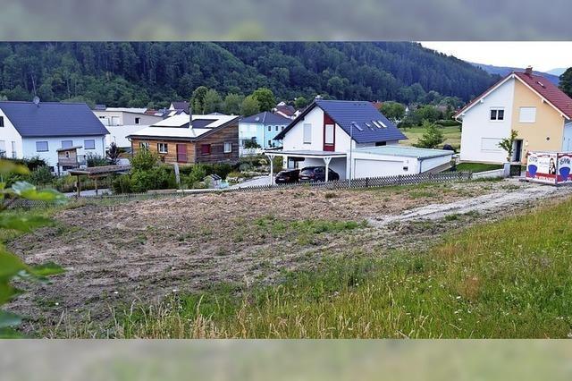 Langenau wird wieder um drei Doppelhäuser größer