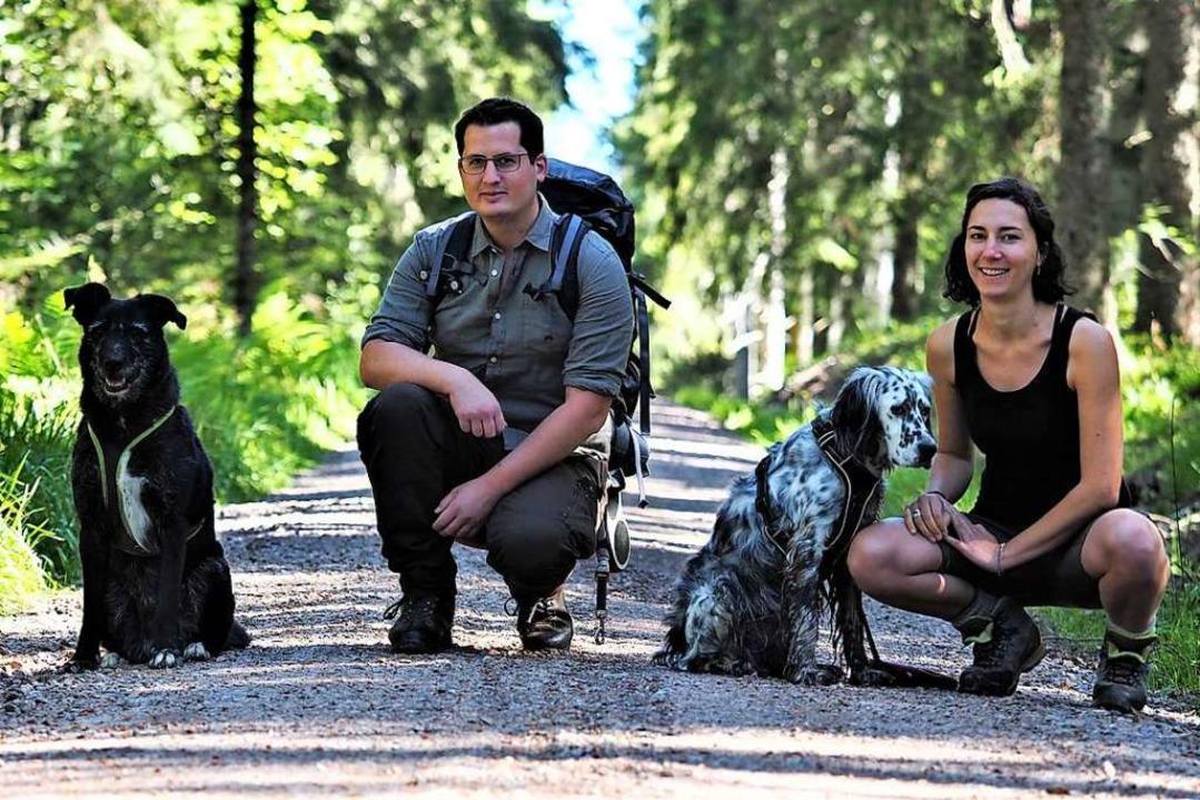 Auf Spurensuche im Wald bei Schluchsee...nglish Setter Galahad und Hannah Weber    Foto: Susanne Gilg