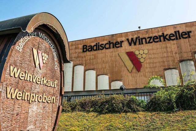 Badischer Winzerkeller will nach schwierigem Geschäftsjahr seine Strukturen ändern