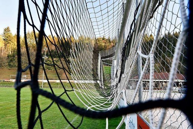 Rat Freiburg-Kappel finanziert Ersatz für zerschnittene Tornetze