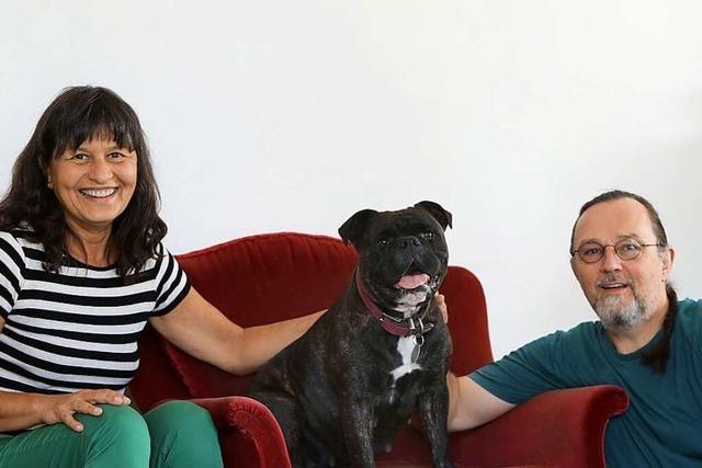 Warum dieses Lahrer Paar Bulldogge Bella bei sich aufnahm