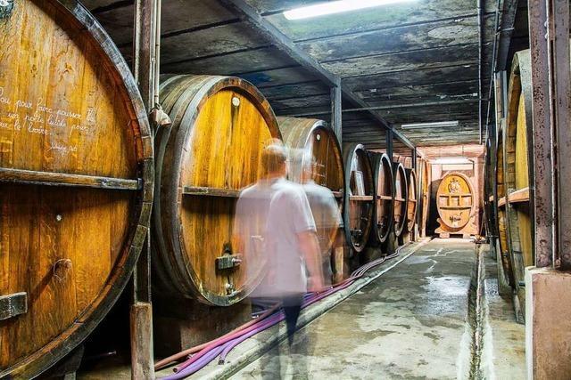 Im Elsass werden vier Millionen Liter Wein zu Desinfektionsmittel verarbeitet