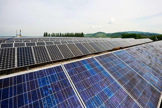 Badenova baut unweit von Fessenheim ein 21-Megawatt-Solarkraftwerk
