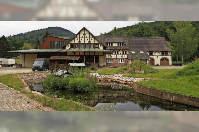 Neue Pläne für die Glöckle-Mühle