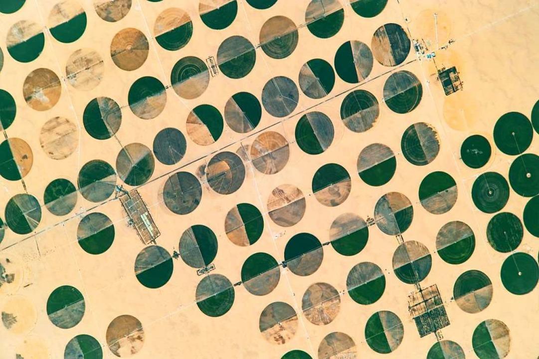 Schnappschuss aus der internationalen ...der aus wie die Spuren Außerirdischer.    Foto: NASA