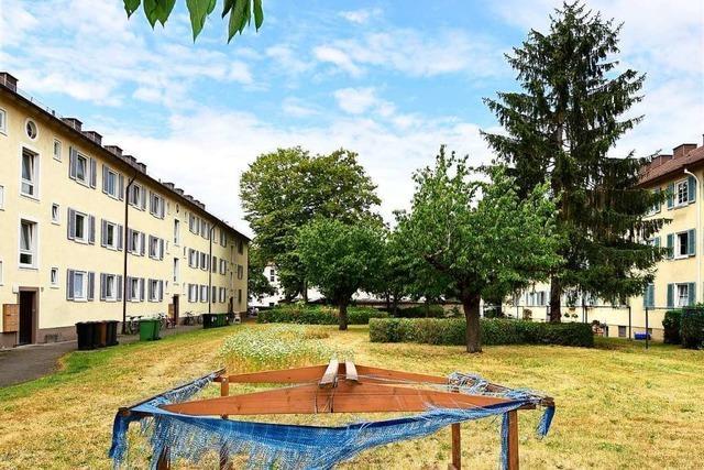 Stadtbau Freiburg will in Haslach 143 alte Wohnungen durch 225 neue ersetzen