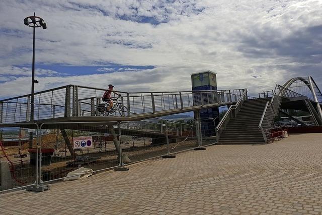 Mit dem Fahrrad den Rhein erkunden