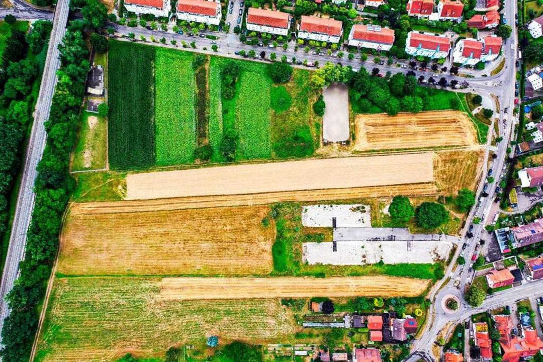 Auf diesem Areal in Gundelfingen sollen Wohnhäuser entstehen.   | Foto: Privat
