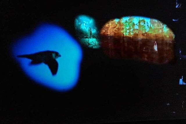 Bewegende Kunst zum Zustand des Planeten im ZKM Karlsruhe