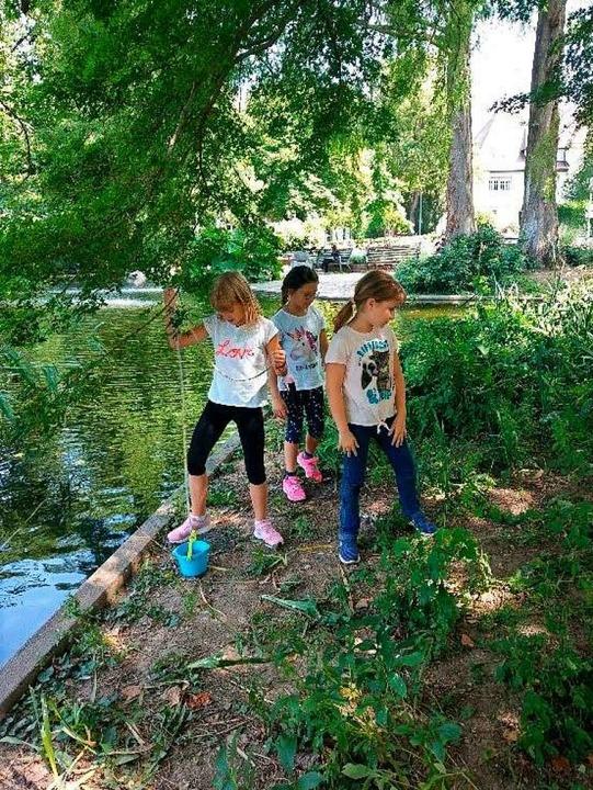 Beim Spielen im Stadtgarten  | Foto: Privat