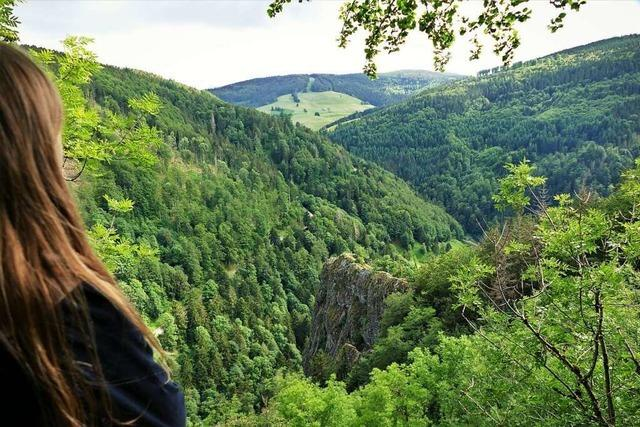 Steile Pfade und großes Abenteuer auf dem Ritterpfad im Münstertal