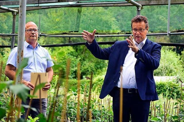 Wo in Freiburg am Wald der Zukunft geforscht wird