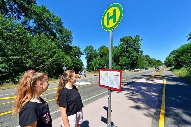 Der Opfinger See bekommt eine provisorische Bushaltestelle