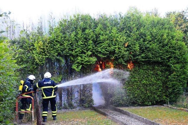 Hecke fängt in Schopfheim Feuer