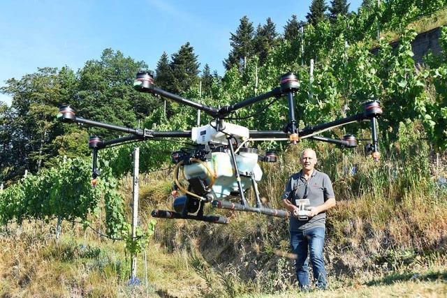 Glottertäler Winzer testen Drohne im Weinbau – und sind zufrieden