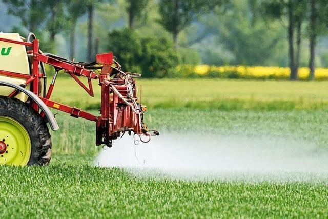 Regierungspräsidium muss Aufzeichnungen über Pestizide herausgeben
