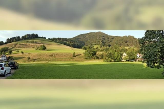 Weitere Wohnbebauung in Simonswald rückt näher