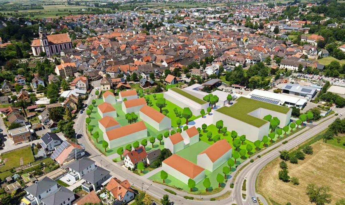So sollte das neue Quartier nach Wunsch der Verwaltung aussehen.    Foto: Stadt Ettenheim