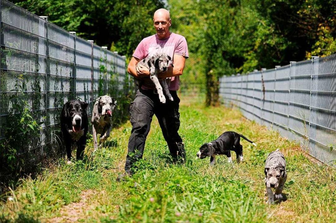 Volker Meier hat alle Hände voll zu tu...ge haben schon neue Familien gefunden.    Foto: Bettina Schaller