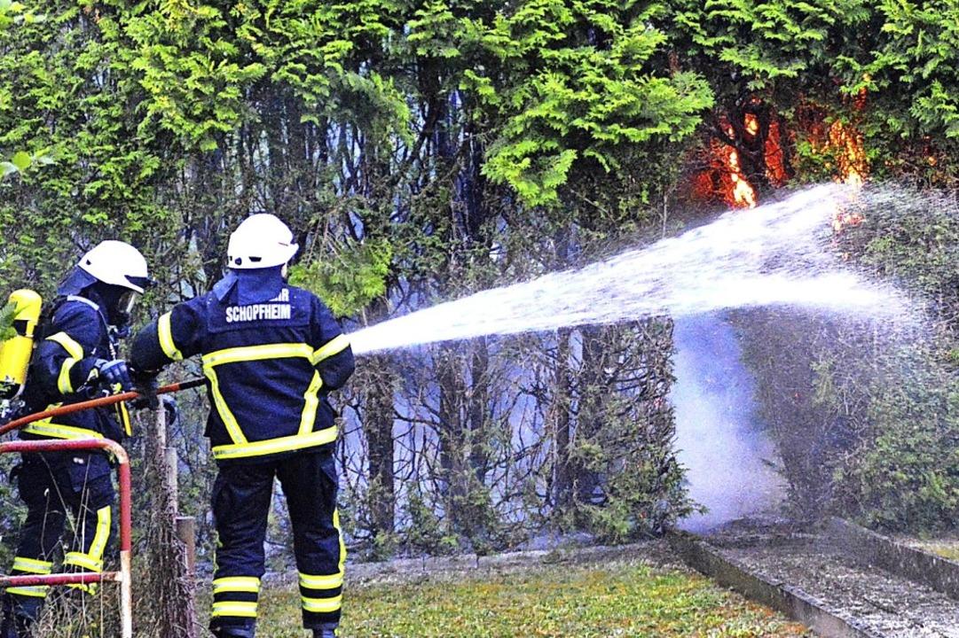 Die Tujahecke in der Roggenbachstraße ...e Feuerwehr löschte den Brand schnell.  | Foto: Edgar Steinfelder